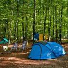 9-Kamp Zlatorog Bohinj
