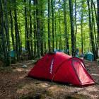 10-Kamp Zlatorog Bohinj