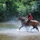21-S konji po Kolpi