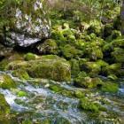 7-The source of Kamniška Bistrica river