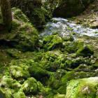 8-The source of Kamniška Bistrica river