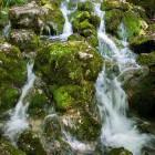 9-The source of Kamniška Bistrica river