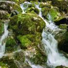 10-The source of Kamniška Bistrica river