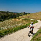 1-Cycling through the endless vineyards, Jeruzalem