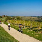 5-Cycling through the endless vineyards, Jeruzalem