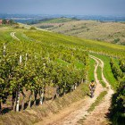 9-Cycling through the endless vineyards, Jeruzalem