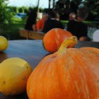 13-Turistična kmetija Püklavec - Jeruzalem