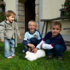 36-Firbas tourist farm, Slovenske Gorice
