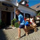 30-Turistična kmetija Firbas, Slovenske Gorice