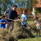 39-Firbas tourist farm, Slovenske Gorice