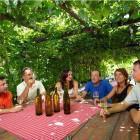 14-Turistična kmetija Firbas, Slovenske Gorice
