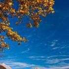 20-Pogled na Kalški Greben