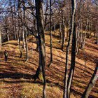 25-The ridge towards Javorjev Vrh