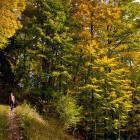 5-The path from Mače village to Hudičev Boršt