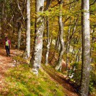 6-The path from Mače village to Hudičev Boršt