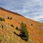 9-Na travnikih pod Hudičevim Borštom