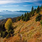 10-Meadows below Hudičev Boršt