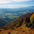 11-Na travnikih pod Hudičevim Borštom