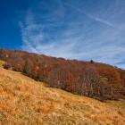 13-Meadows below Hudičev Boršt