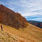 15-Na travnikih pod Hudičevim Borštom