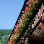 16-Plesnik tourist farm, Logar valley