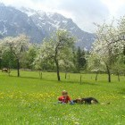 17-Plesnik tourist farm, Logar valley