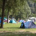 3-Kamp Nadiža Podbela