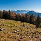 12-Vrtaška planina