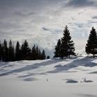 16-Proti planini Uskovnica