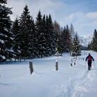 22-Zimska idila na pokljuških planinah