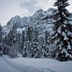 17-Fantastic winter paradise, Kranjska Gora