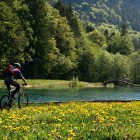 10-Find the tranquil places around Bled