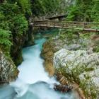5-Visit the world renowned Vintgar Gorge