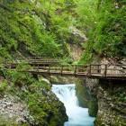 7-Visit the world renowned Vintgar Gorge