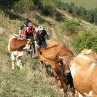 9-Best single trails of Slovenia, Photo: G. Stopar