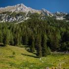 5-Pogled proti Vrtači s Smokuške planine