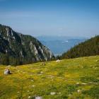 6-Vrtača iz Završnice - na Smokuški planini