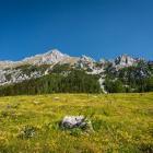 7-Vrtača iz Završnice - na Smokuški planini