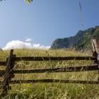 23-Turistična kmetija Pri Plajerju, Trenta