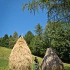 5-Vzpon s kolesi na Matajur