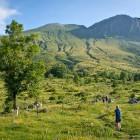 3-Začetek poti na Krn na planini Kuhinja