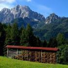 19-Vila Planina, Kranjska Gora