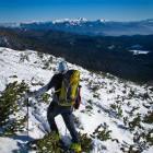 """4-Veliki Draški vrh: malo """"drvarjenja"""" na poti"""