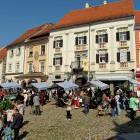 46-Lively city of Ptuj, Slovenia