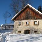 4-Holiday house with sauna near Mozirje