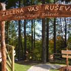 14-Brunarice Zelena vas Ruševec, Pohorje