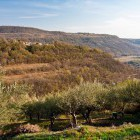 4-Slovenian Istria, self-guided hiking tour