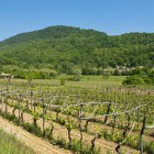 14-Slovenian Istria, self-guided hiking tour