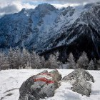 13-Goli vrh, Jezersko