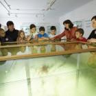 23-Muzej rudnika Mežica